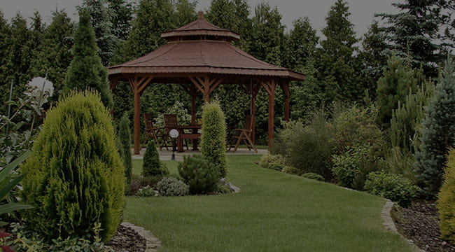 Springfield Garden Design